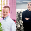 Innovativa odlare vinner ICAs Entreprenörspris