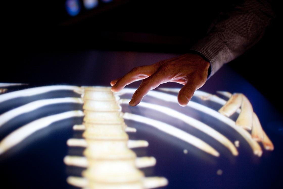 Visualiseringens stora pris till Anders Ynnerman. Visualiseringsbordet som gjort den virtuella obduktionen möjlig.  Foto: David Ejnar Nygren