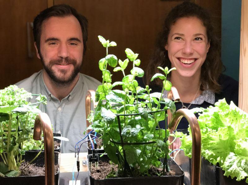 Uppkopplat miniväxthus ger alla gröna fingrar