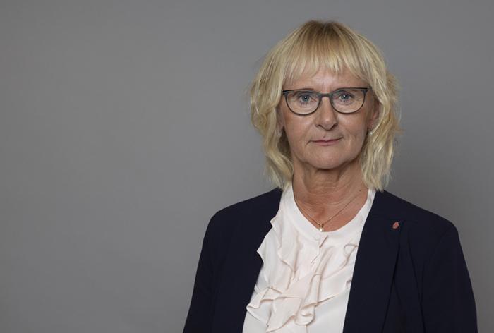 Linköping är hemma för civilministern